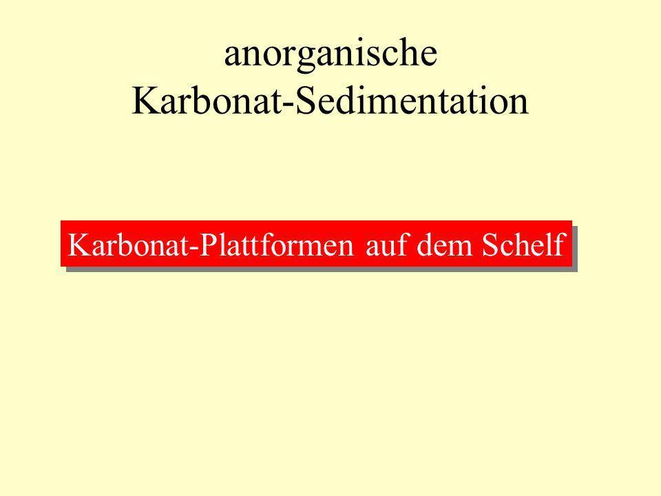 anorganische Karbonat-Sedimentation