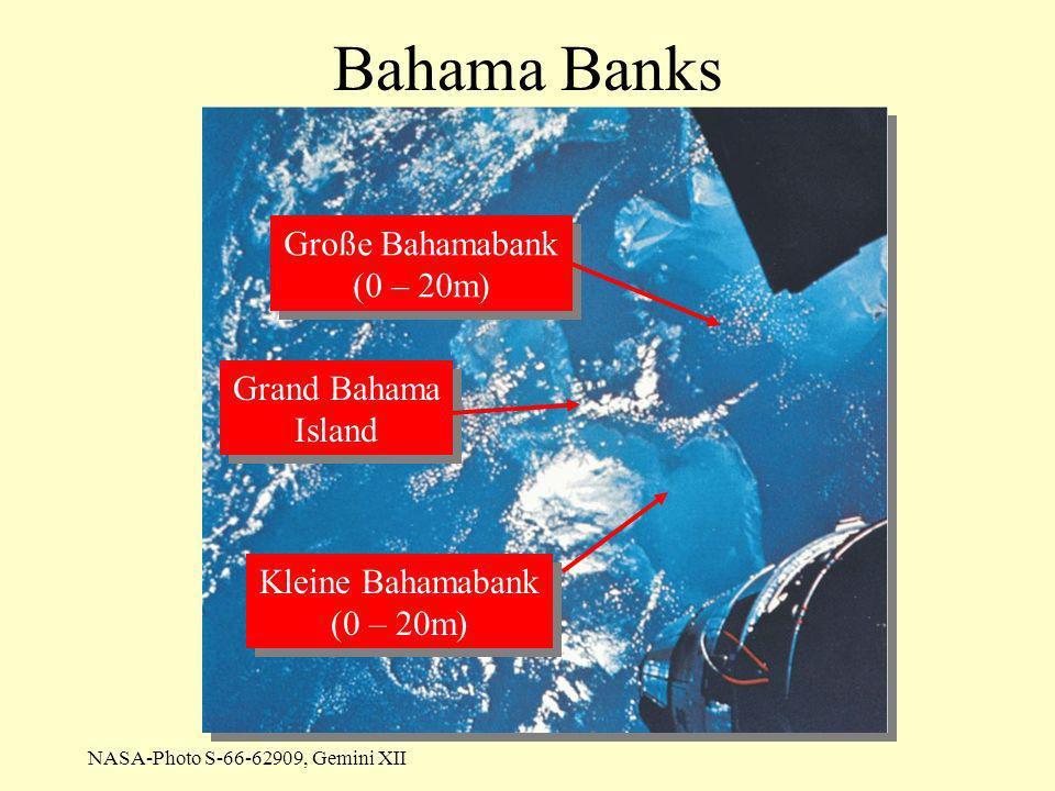 Bahama Banks Große Bahamabank (0 – 20m) Grand Bahama Island