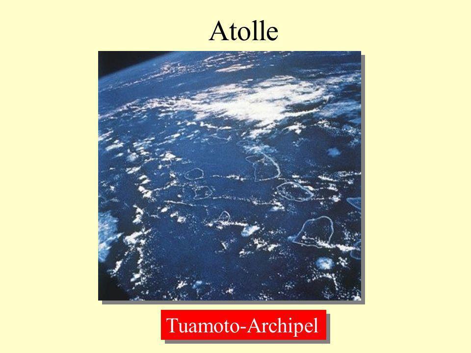 Atolle Tuamoto-Archipel