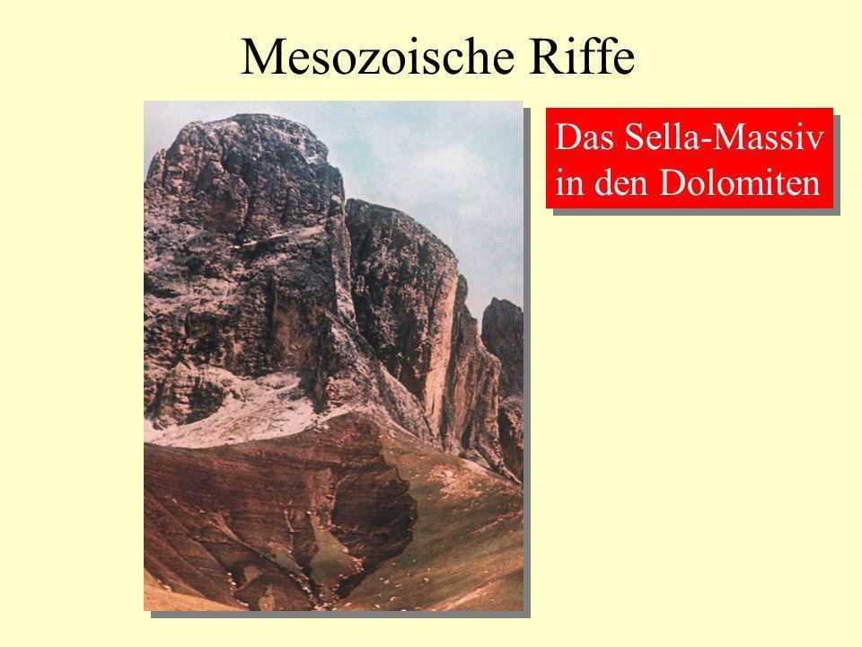 Mesozoische Riffe Das Sella-Massiv in den Dolomiten