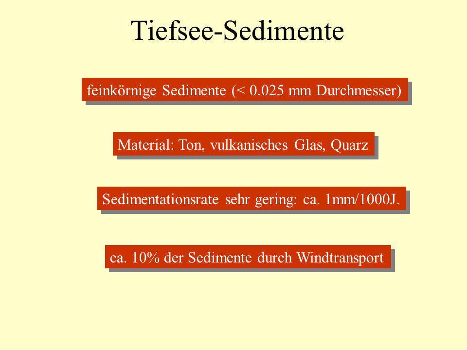 Tiefsee-Sedimente feinkörnige Sedimente (< 0.025 mm Durchmesser)