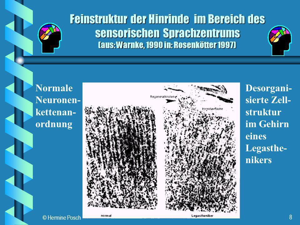 28.03.2017 Feinstruktur der Hinrinde im Bereich des sensorischen Sprachzentrums (aus: Warnke, 1990 in: Rosenkötter 1997)