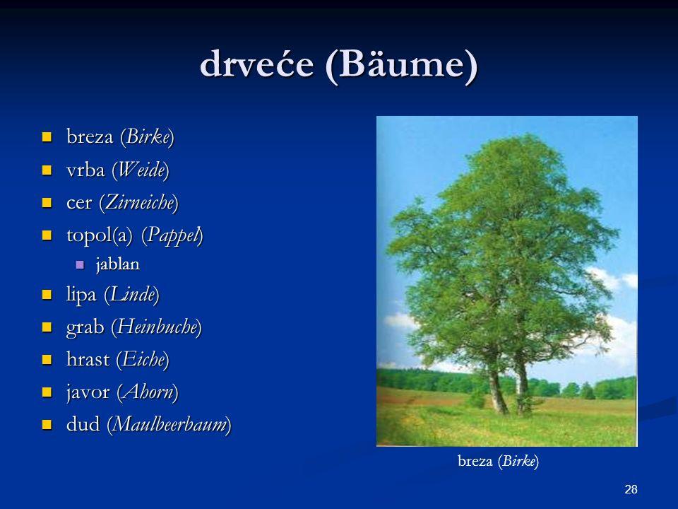 drveće (Bäume) breza (Birke) vrba (Weide) cer (Zirneiche)