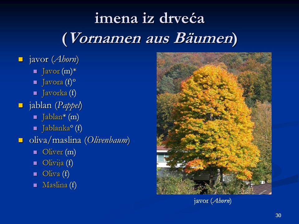 imena iz drveća (Vornamen aus Bäumen)