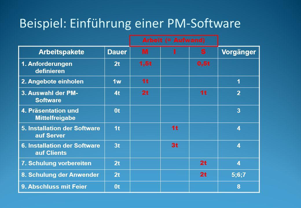 Beispiel: Einführung einer PM-Software