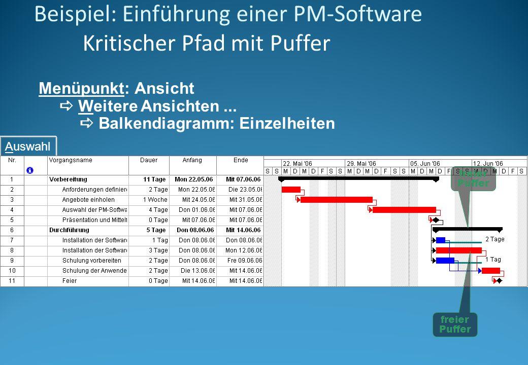 Beispiel: Einführung einer PM-Software Kritischer Pfad mit Puffer