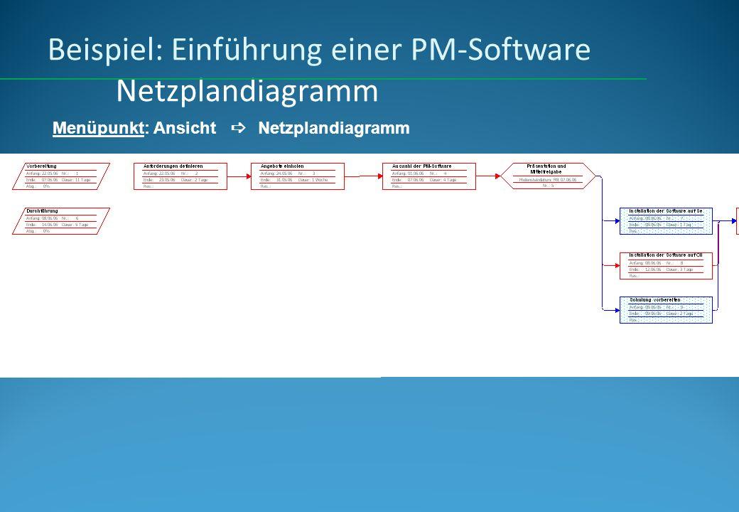 Beispiel: Einführung einer PM-Software Netzplandiagramm
