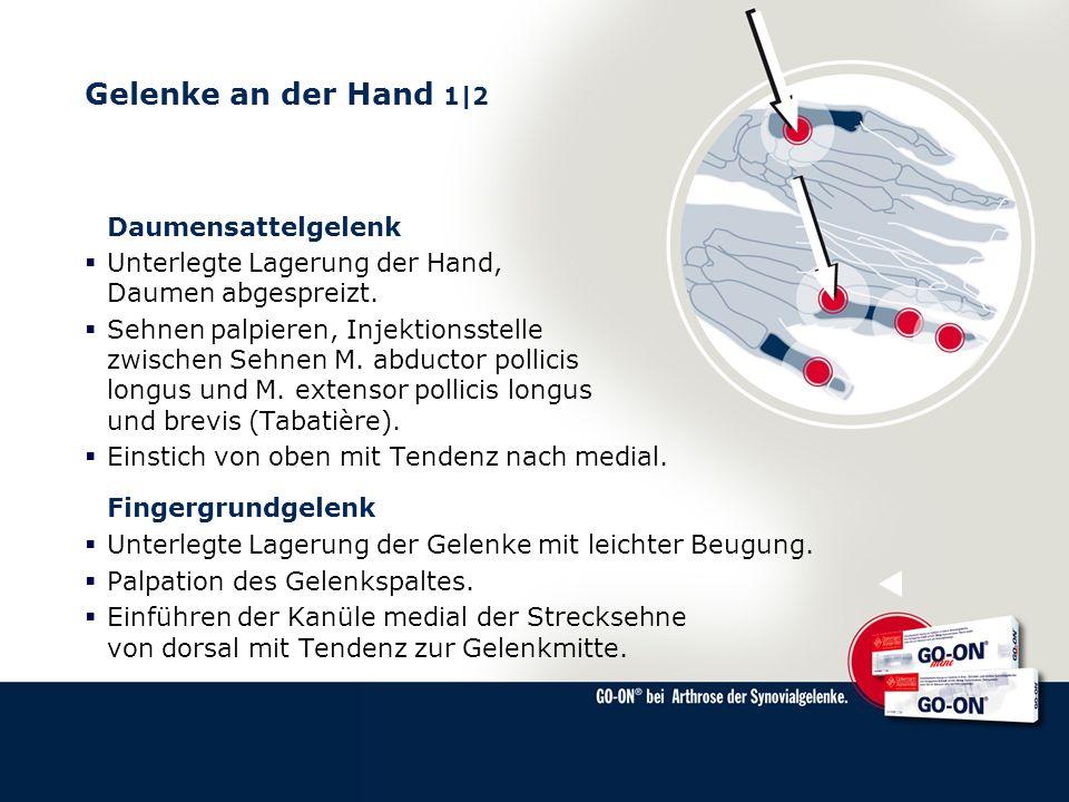 Gelenke an der Hand 1|2 Daumensattelgelenk
