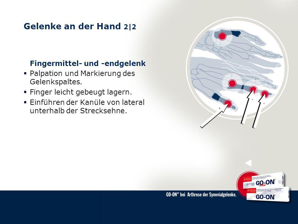 Gelenke an der Hand 2|2 Fingermittel- und -endgelenk