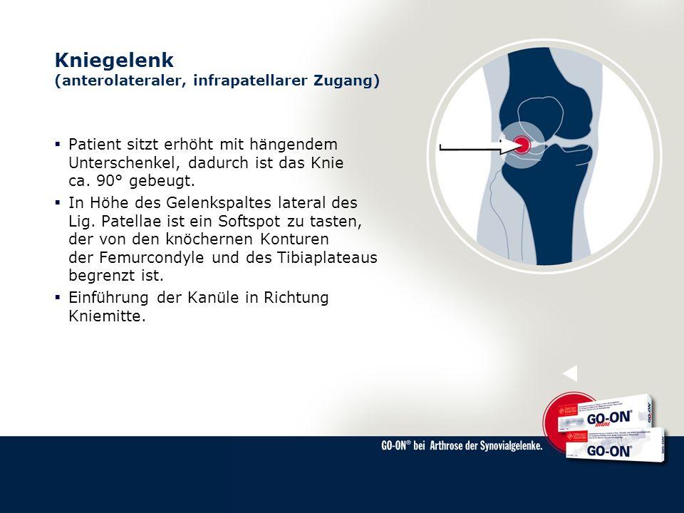 Kniegelenk (anterolateraler, infrapatellarer Zugang)