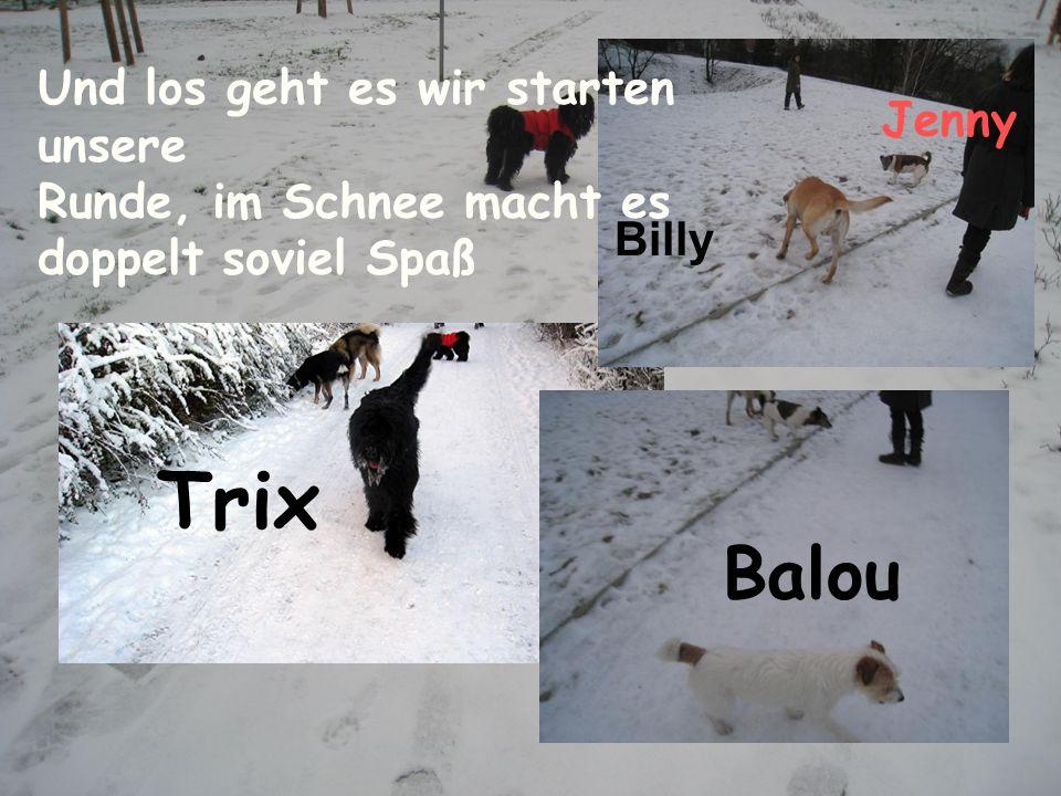 Trix Balou Und los geht es wir starten unsere
