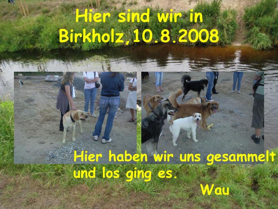 Hier sind wir in Birkholz,10.8.2008