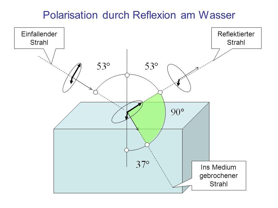 Polarisation durch Reflexion am Wasser