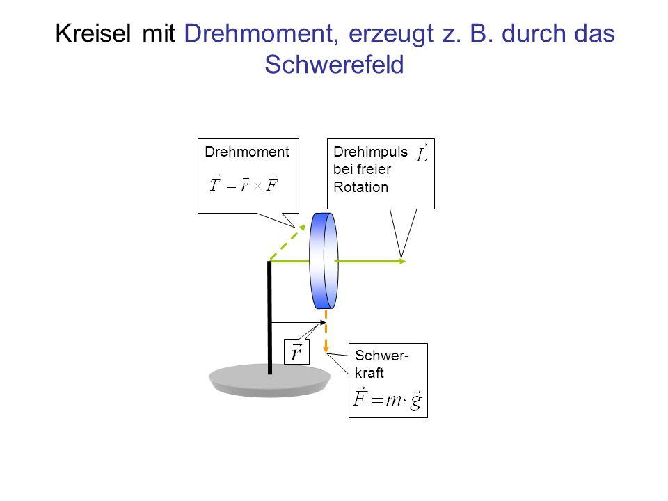 Kreisel mit Drehmoment, erzeugt z. B. durch das Schwerefeld