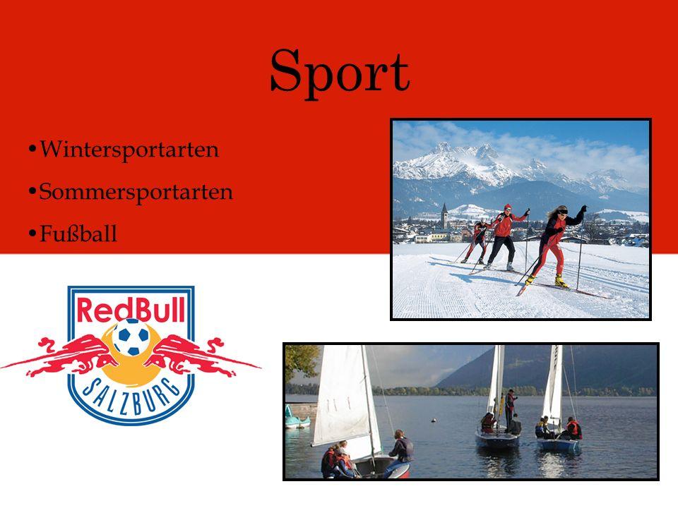 Sport Wintersportarten Sommersportarten Fußball