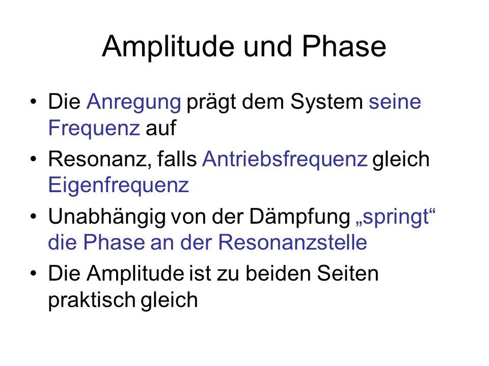 Amplitude und Phase Die Anregung prägt dem System seine Frequenz auf