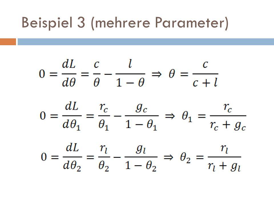Beispiel 3 (mehrere Parameter)