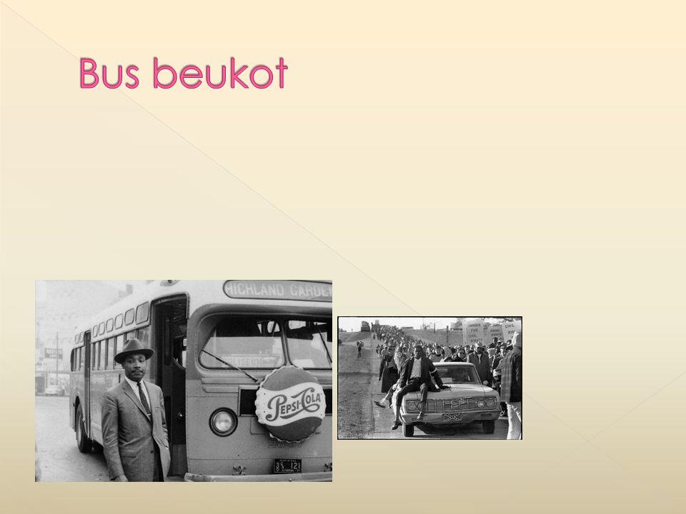 Bus beukot