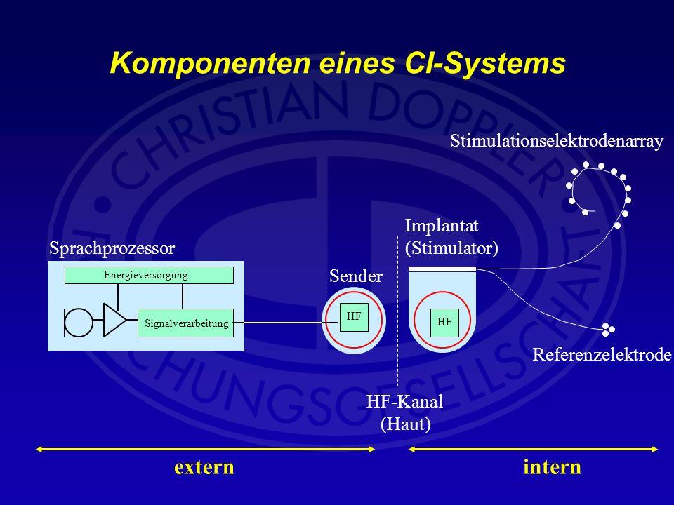 Komponenten eines CI-Systems