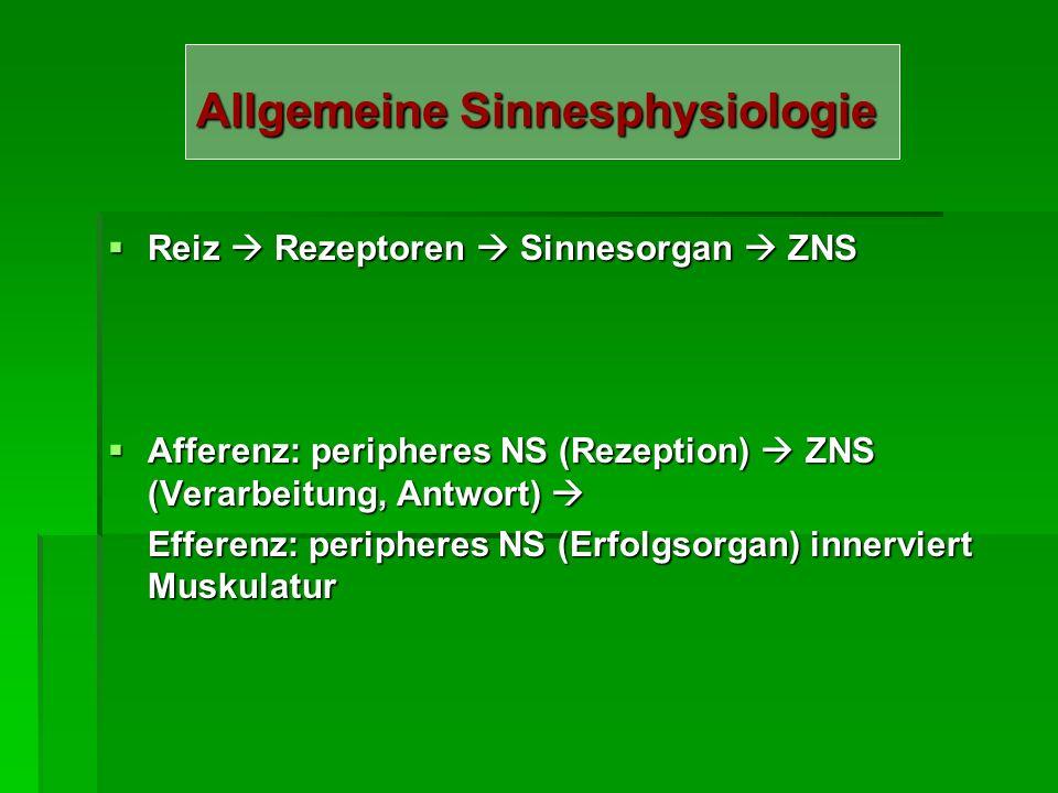 Allgemeine Sinnesphysiologie