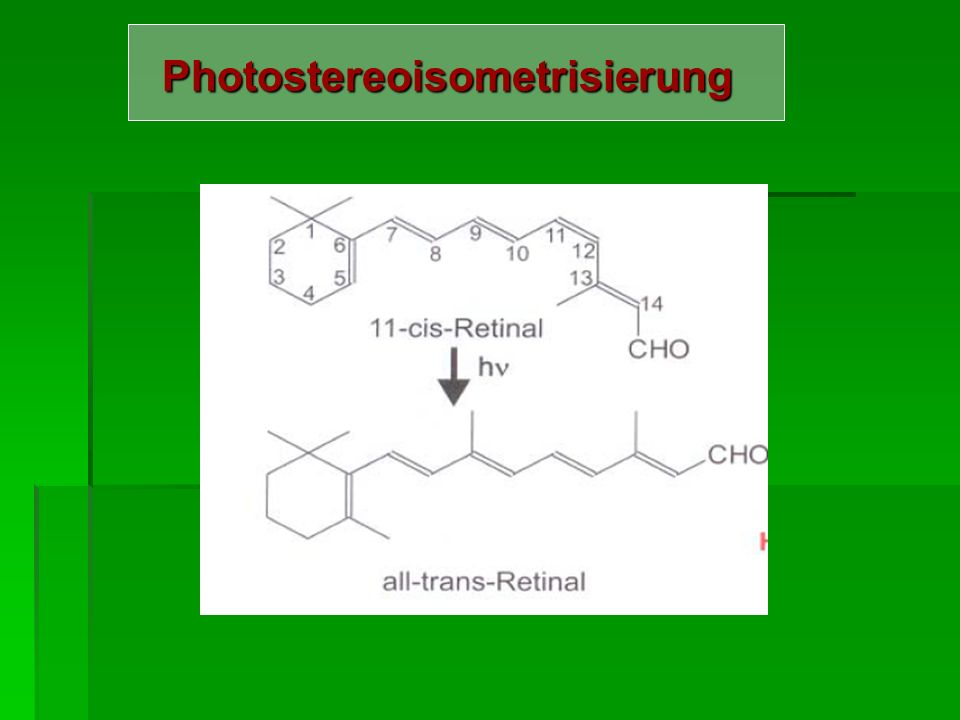 Photostereoisometrisierung