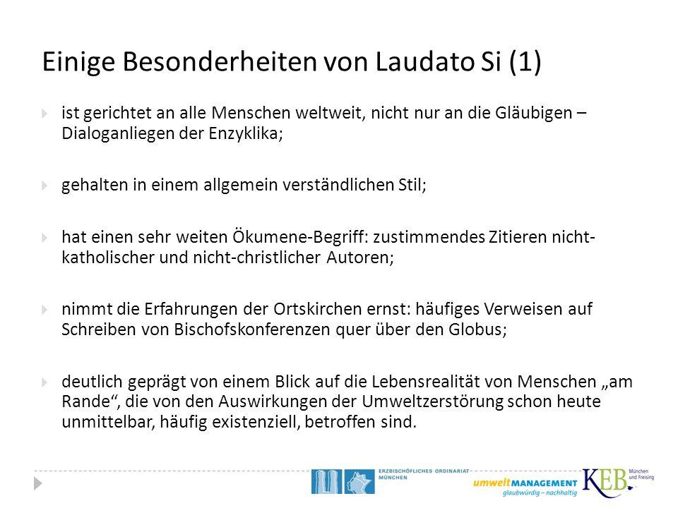 Einige Besonderheiten von Laudato Si (1)