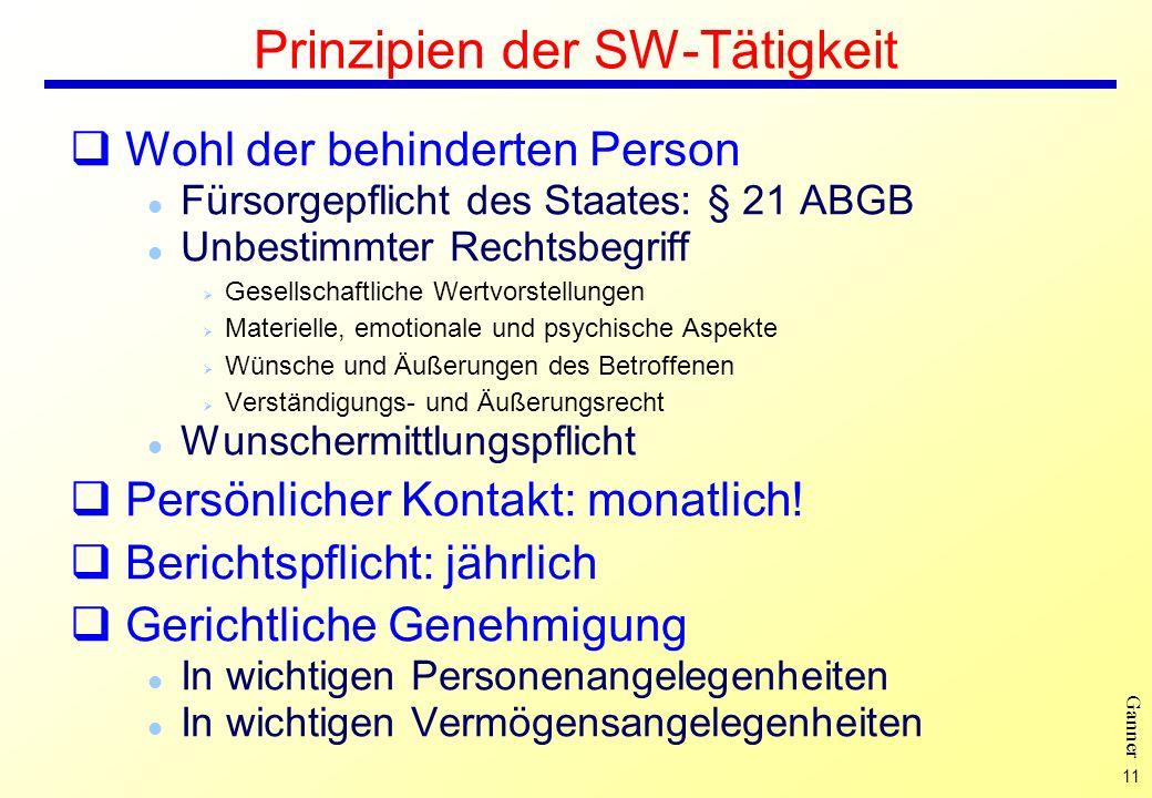 Prinzipien der SW-Tätigkeit