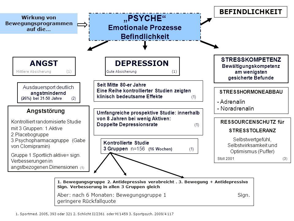 """""""PSYCHE Emotionale Prozesse Befindlichkeit"""