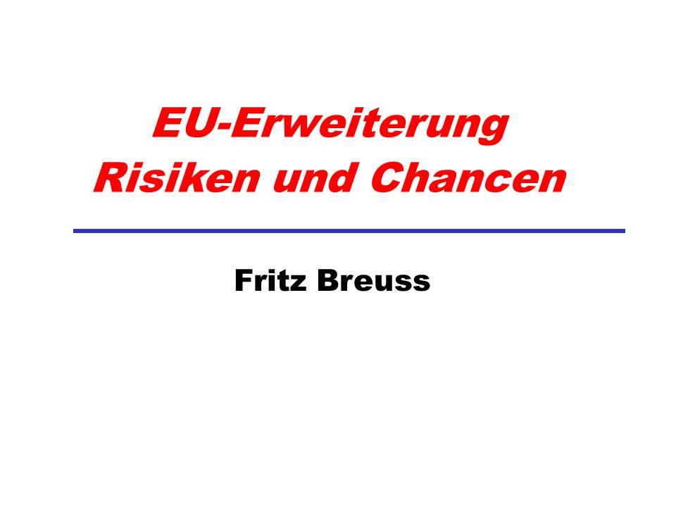 EU-Erweiterung Risiken und Chancen
