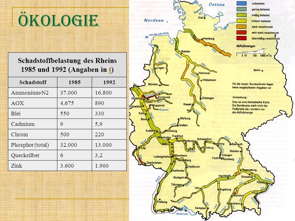 Schadstoffbelastung des Rheins