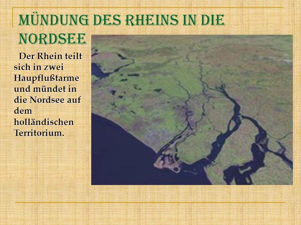 Mündung des Rheins in die Nordsee