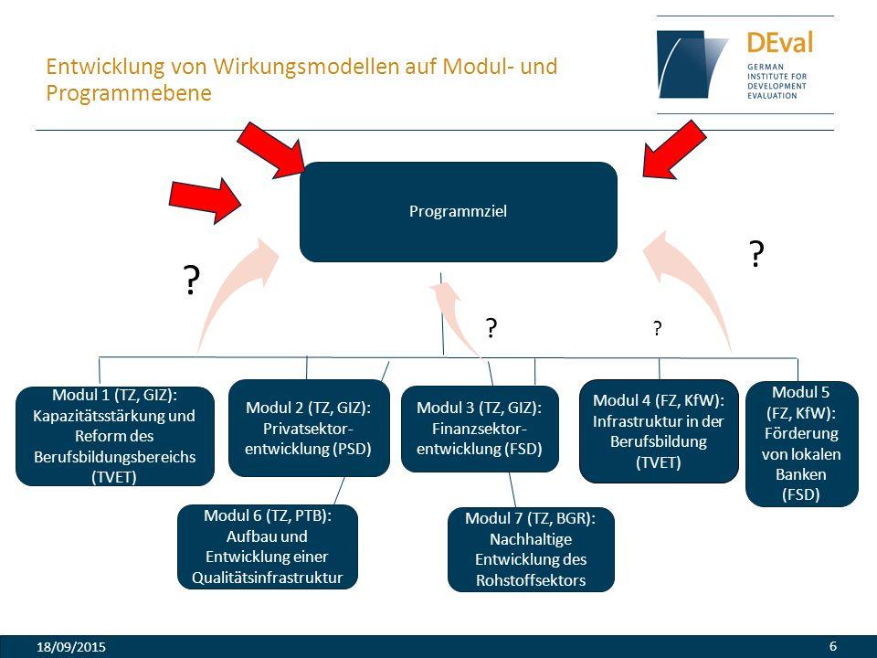 Entwicklung von Wirkungsmodellen auf Modul- und Programmebene