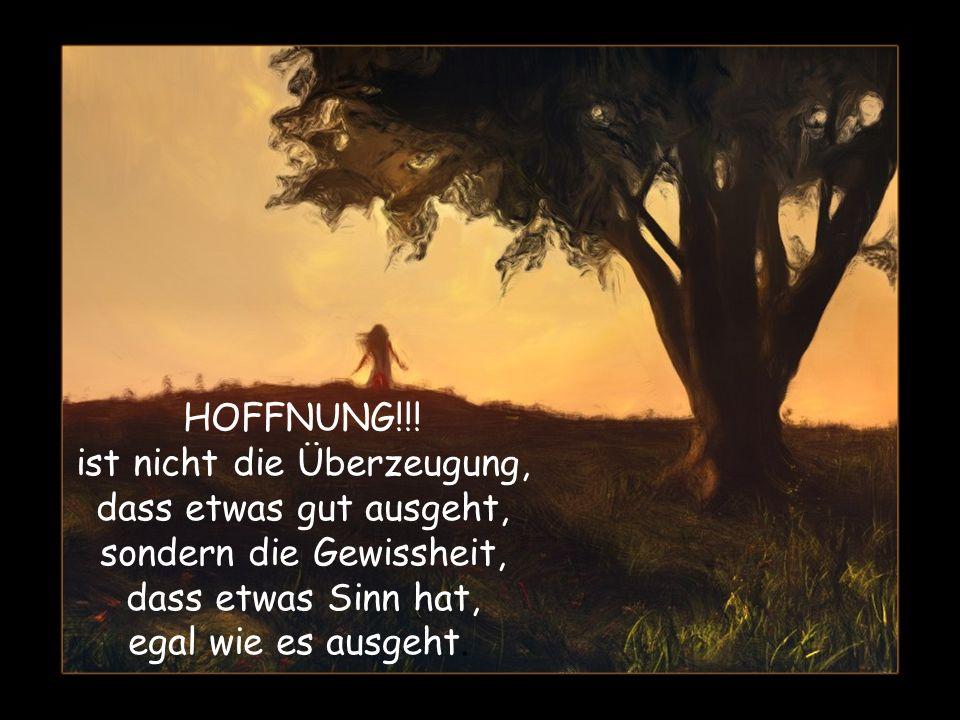 HOFFNUNG!!.