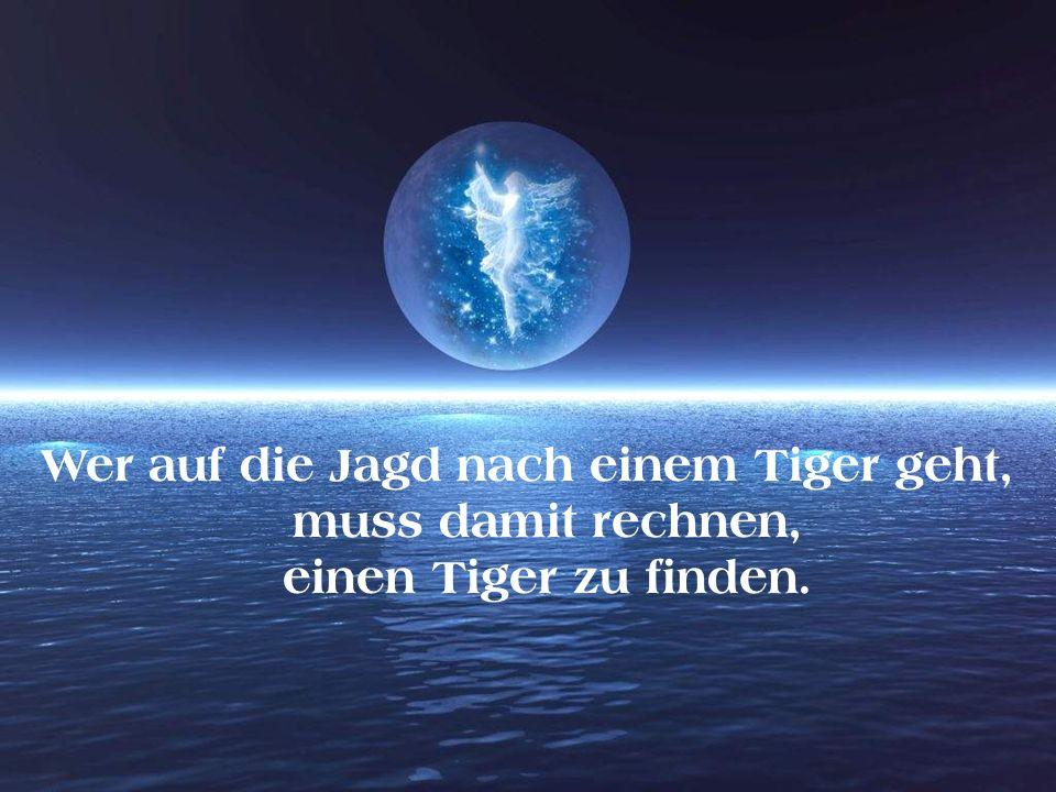 Wer auf die Jagd nach einem Tiger geht, muss damit rechnen, einen Tiger zu finden.