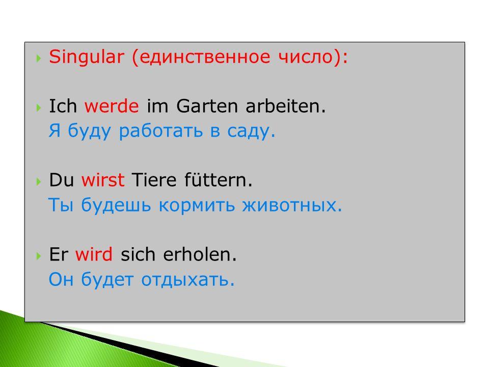 Singular (единственное число):