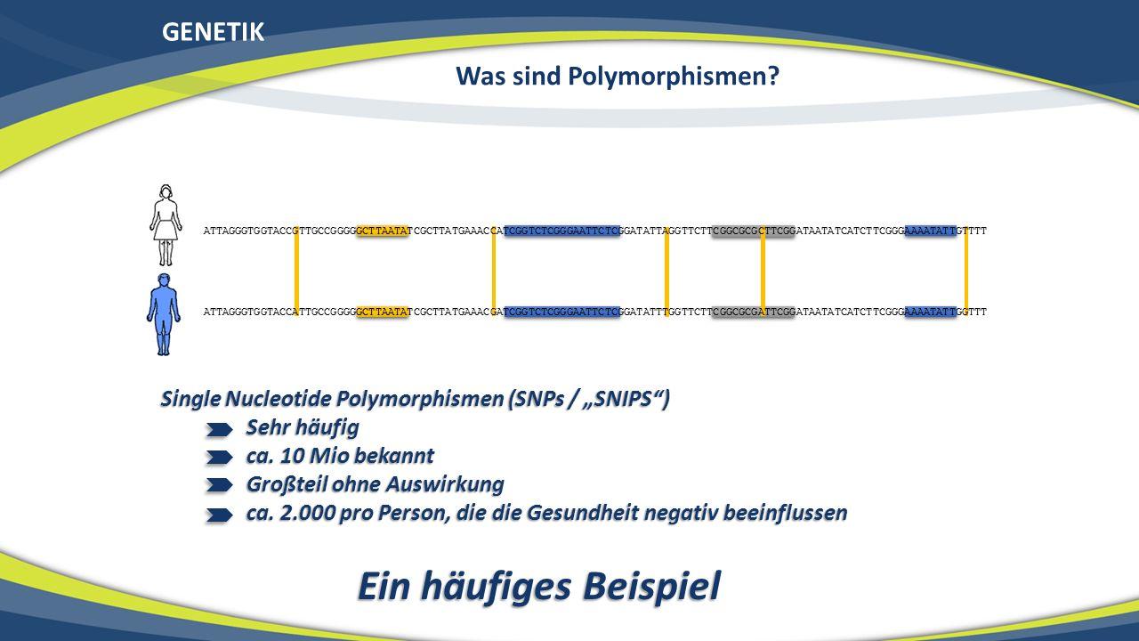 Was sind Polymorphismen