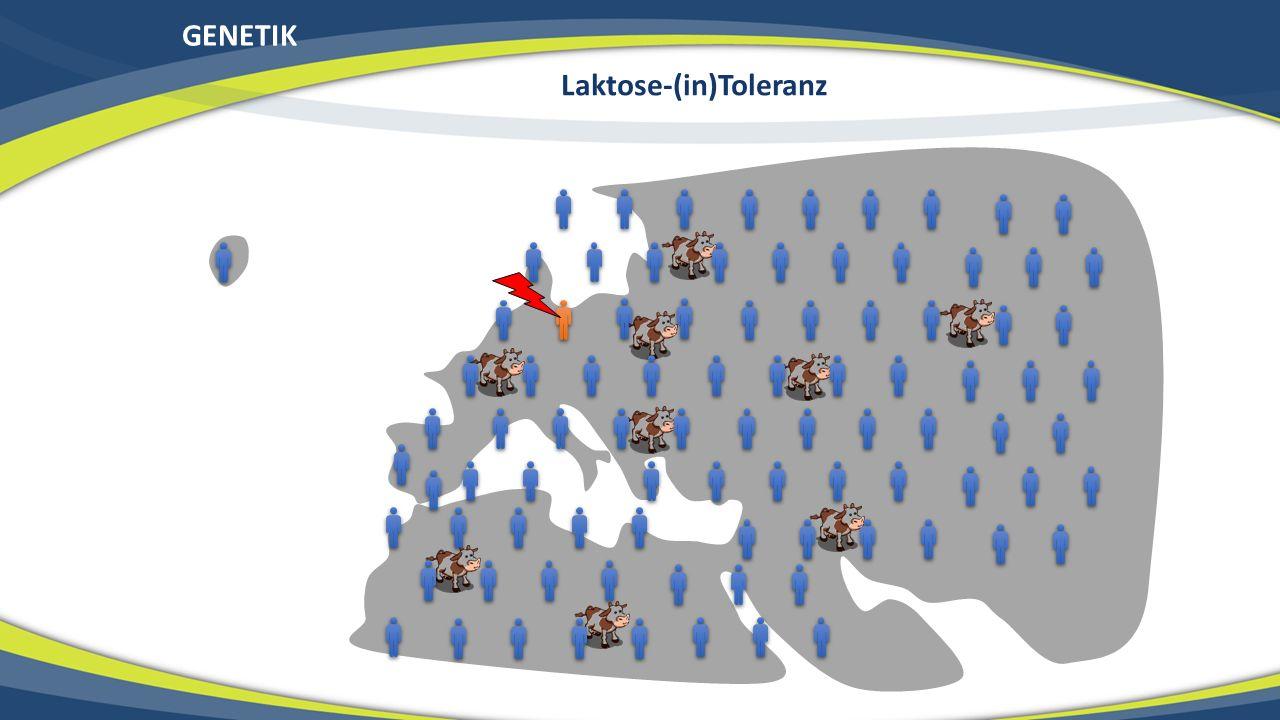 Laktose-(in)Toleranz