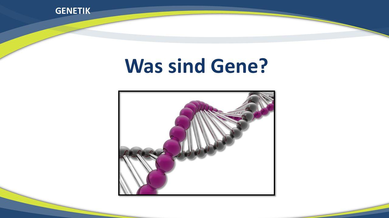 GENETIK Was sind Gene