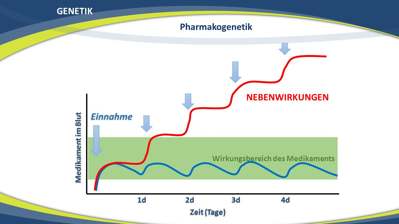 GENETIK Pharmakogenetik NEBENWIRKUNGEN Einnahme Medikament im Blut