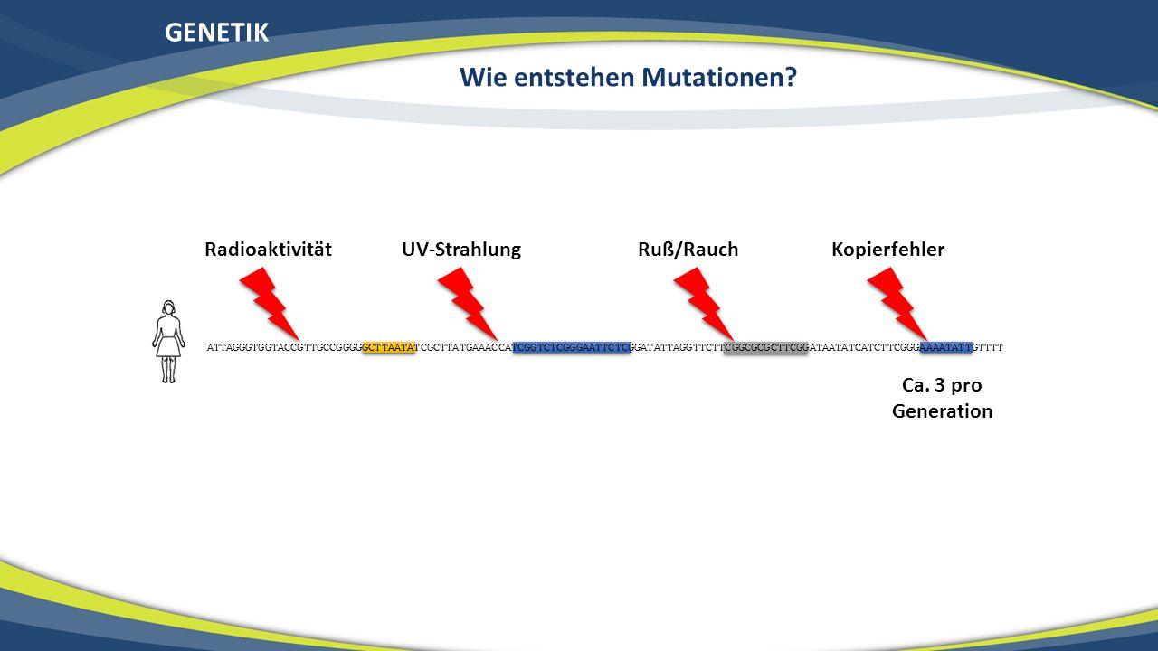 Wie entstehen Mutationen