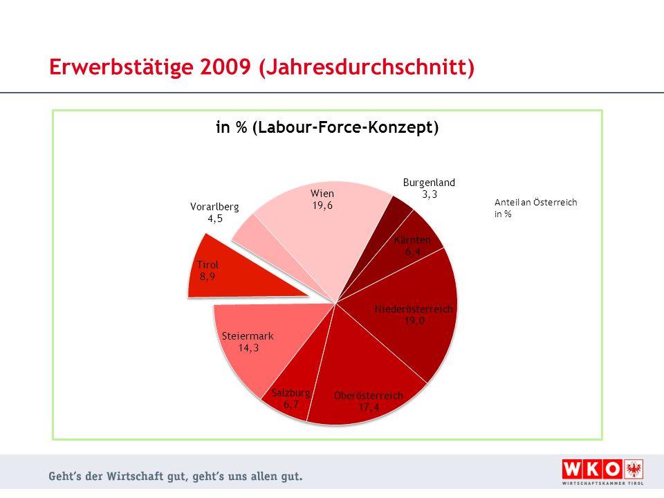 Erwerbstätige 2009 (Jahresdurchschnitt)