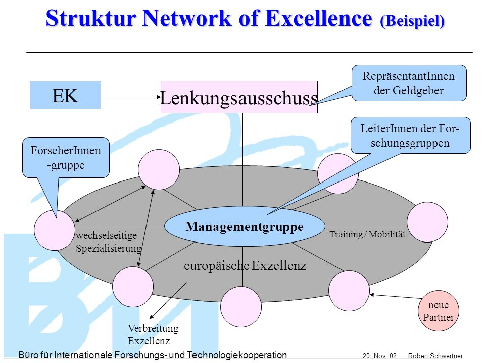 Struktur Network of Excellence (Beispiel)
