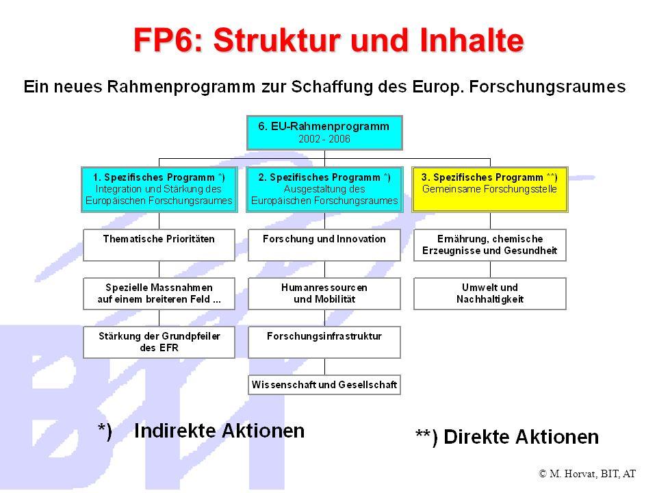 FP6: Struktur und Inhalte