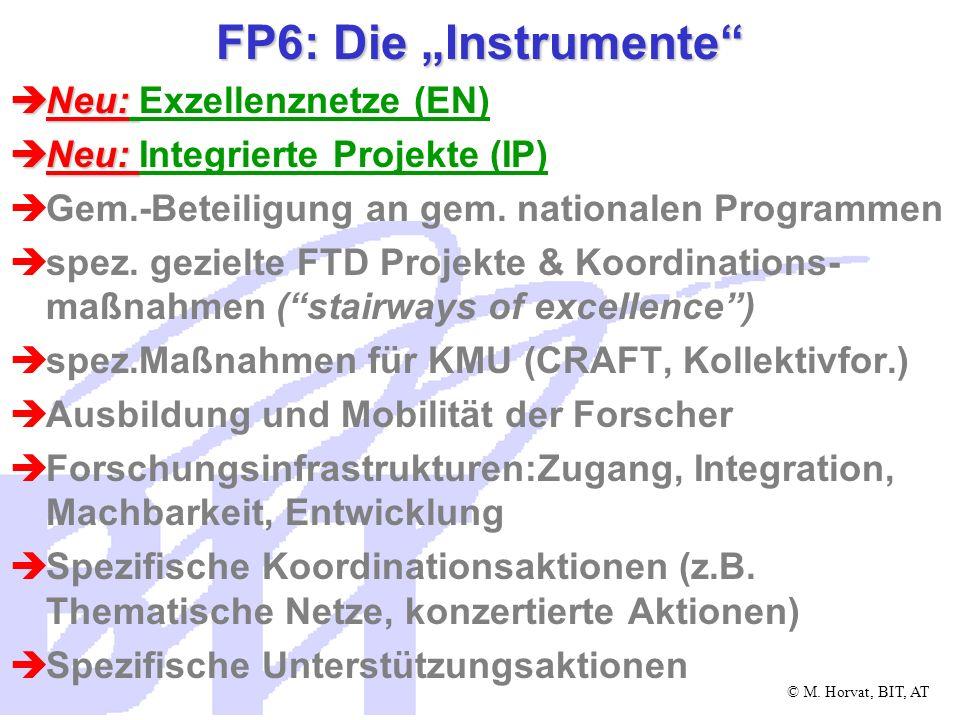 """FP6: Die """"Instrumente Neu: Exzellenznetze (EN)"""