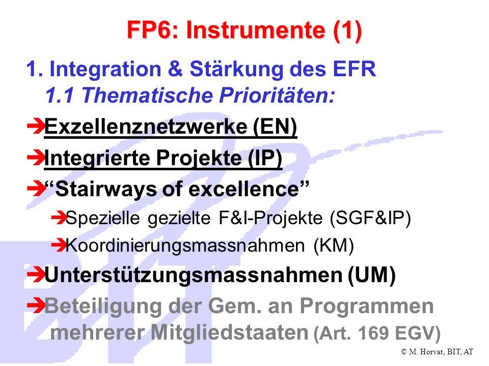 FP6: Instrumente (1) 1. Integration & Stärkung des EFR 1.1 Thematische Prioritäten: Exzellenznetzwerke (EN)