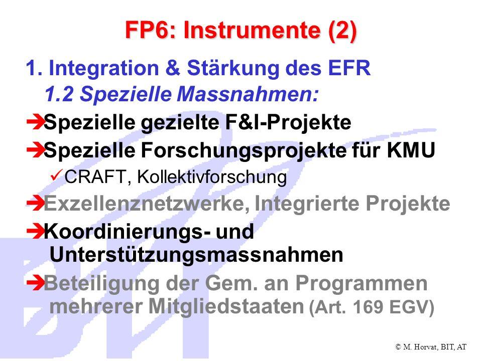 FP6: Instrumente (2) 1. Integration & Stärkung des EFR 1.2 Spezielle Massnahmen: Spezielle gezielte F&I-Projekte.