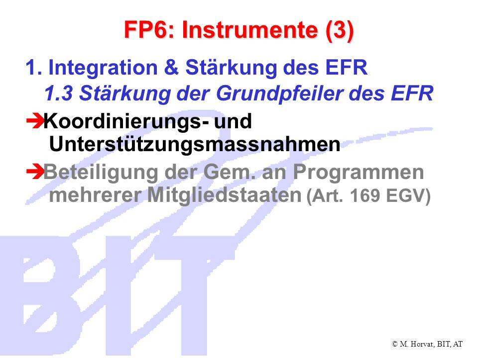 FP6: Instrumente (3) 1. Integration & Stärkung des EFR 1.3 Stärkung der Grundpfeiler des EFR. Koordinierungs- und Unterstützungsmassnahmen.