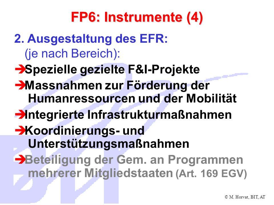 FP6: Instrumente (4) 2. Ausgestaltung des EFR: (je nach Bereich):