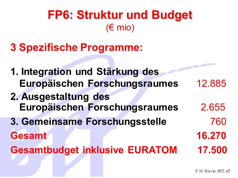 FP6: Struktur und Budget (€ mio)