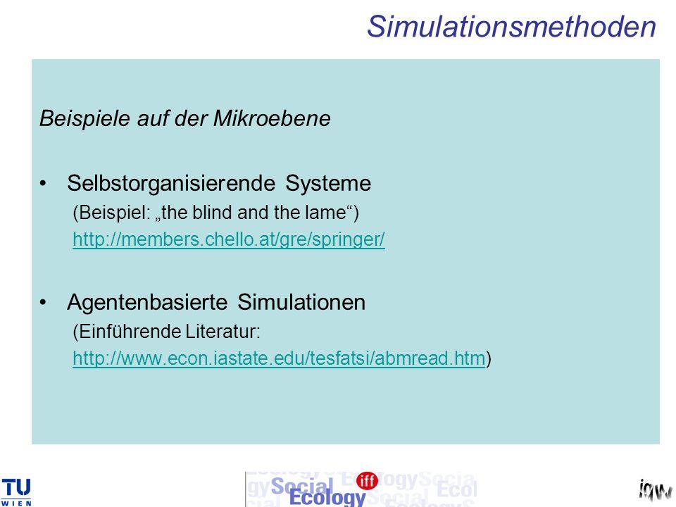 Simulationsmethoden Beispiele auf der Mikroebene